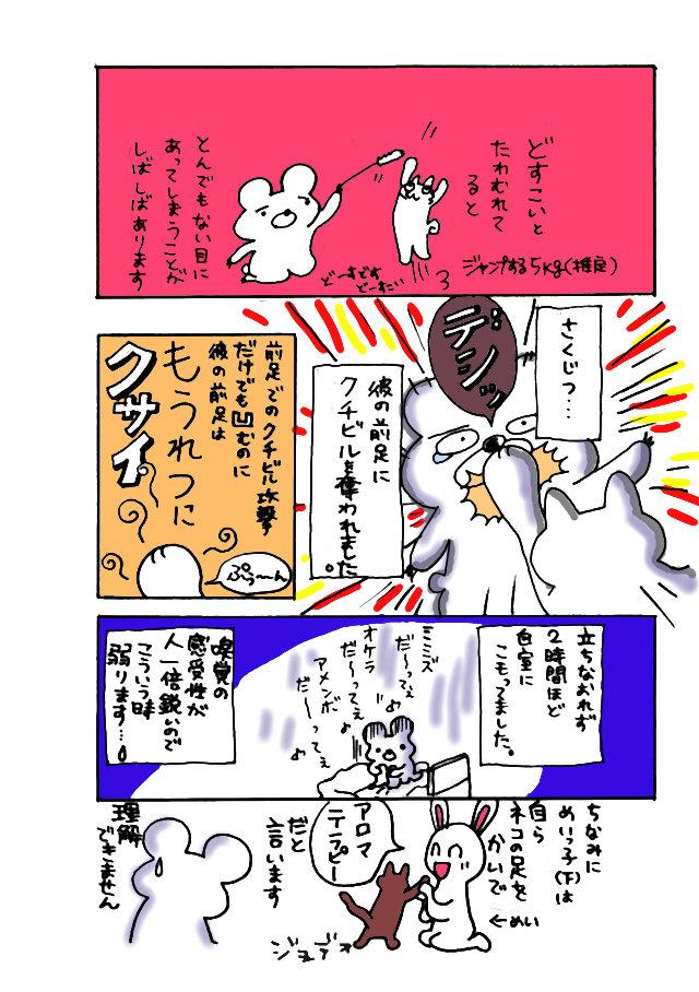 どすこーいs3.jpg